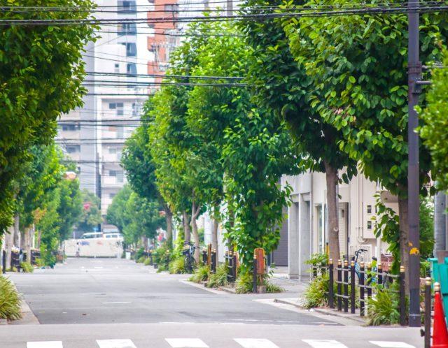 都営三田線「新板橋」駅の利便性とは?新板橋駅周辺を調べてみました!