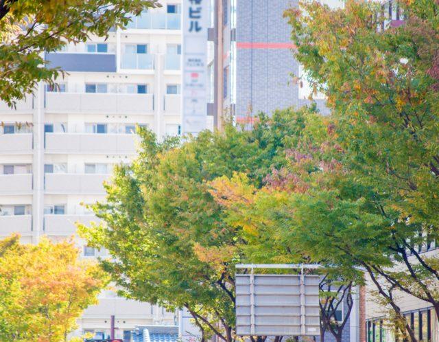 女性一人暮らしにはおすすめ?都営三田線「板橋本町」駅の利便性とは!