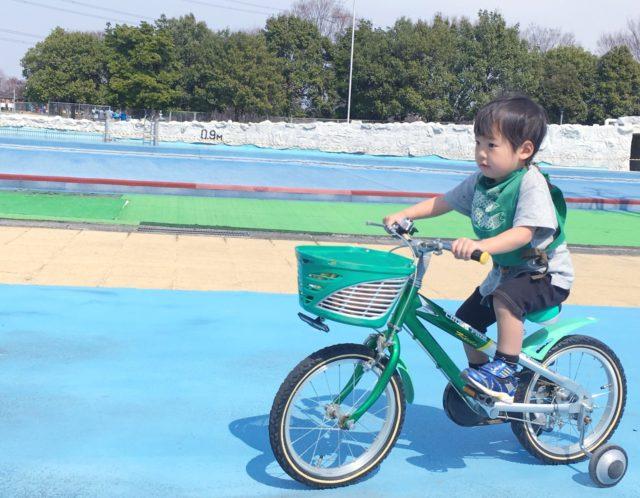 交通ルールを学びながら遊べる!板橋交通公園のご紹介!