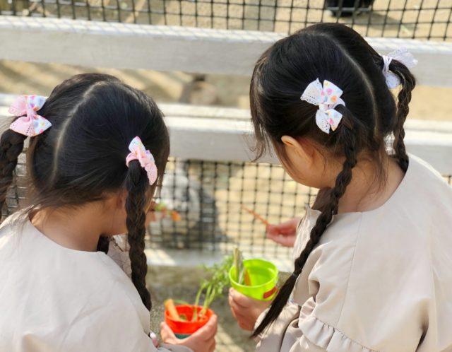 無料で動物と遊べる!子ども動物園・高島平分園はどんなところ?